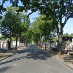 200 ans d'Histoire (et d'histoires) au cimetière Montparnasse !