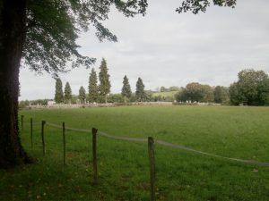 Le bucolique cimetière de Saint Amour